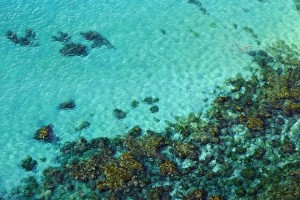 A photo of clear sea water and rocks