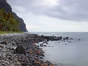A photo of the seashore with rocks and a mountain
